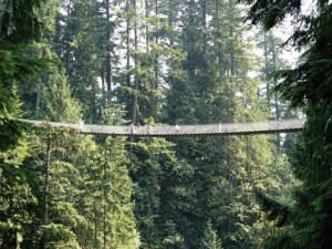FAINT OF HEART—The Capilano Suspension Pedestrian Bridge stretches 450 feet across and 230 feet above the Capilano River in North Vancouver, B.C., Canada.
