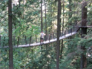 """One of the seven suspension bridges in the """"Walk in the Treetops Adventure"""" at Capilano in Vancouver."""